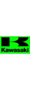 Kawasaki Replica