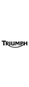Triumph Replica